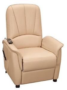 Leather Electric Recliner Chairs  sc 1 st  eBay : recliner chair ebay - islam-shia.org