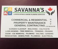 CALL NOW SNOW REMOVAL/PLOWING SERVICES