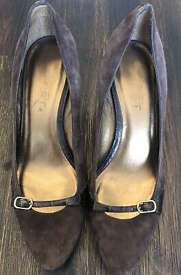 Women's Ann Taylor LOFT Brown Suede Kitten Heels With Alligator Detail Size 6.5