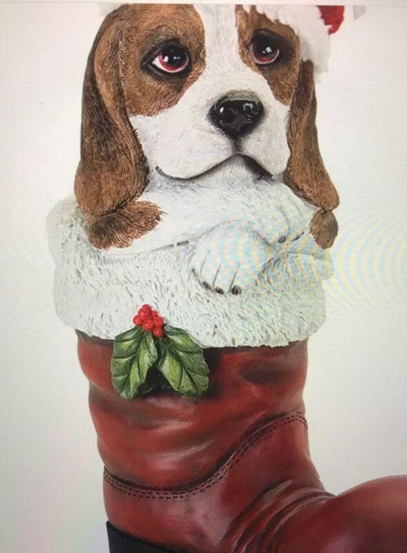 Melrose Beagle In A Santa Boot
