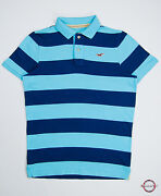 Mens Hollister Polo Shirts Large