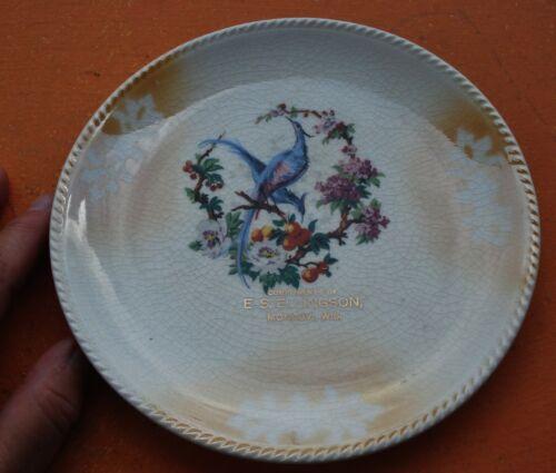 Antique Mondovi WI E. S. Ellingson Souvenir advertising Plate