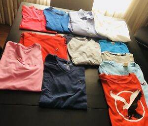 Hollister, American Eagle, Adidas Hoodies & Dry Fit T's & Shorts