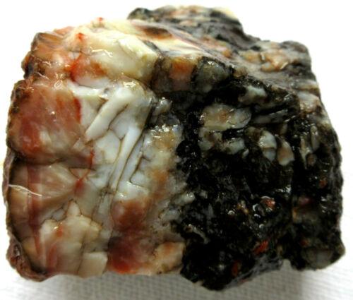 Coprolite - Rough - Dinosaur Poo - Dino Dung - Utah - 195 grams