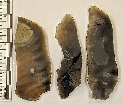 Late Middle Palaeolithic Levallois Blades c45k yrs