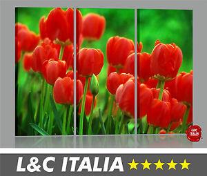 tulipani-3-3-QUADRI-STAMPA-TELA-CANVAS-ARTE-ARREDO