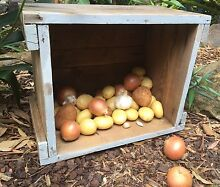 100 year old crate Elanora Heights Pittwater Area Preview