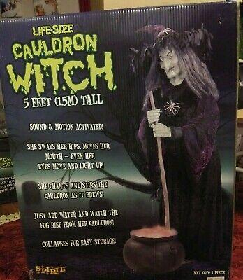 Spirit Halloween 2008 Lifesize Cauldron Witch W/ Original Box VERY RARE