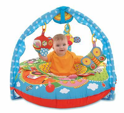 Galt PLAYNEST & GYM - FARM Baby Toddler Toys And Activities for sale  Shipping to South Africa