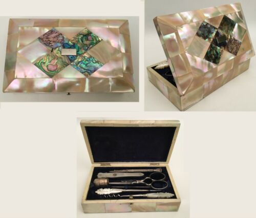 19C Mother of Pearl and Abalone  Etui - Seven Pieces