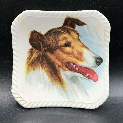 """Vintage Royal Adderley Porcelain Ceramic Pin Dish Collie Dog 4"""" England"""