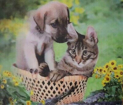 Puppy and Kitten  - 3D Lenticular Motion Poster --12x16 Print