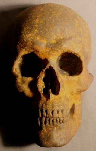 Roman Human Skull Death Mask Sculpture Medical Catacomb Greek Gothic Masonic