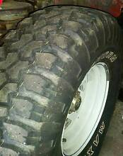 """33"""" Maxi Bighorn Tyre Glenorchy Glenorchy Area Preview"""
