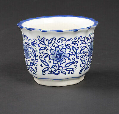 White Ceramic Planters Containers Fresh Plants Flowers Blue