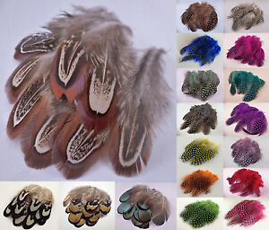 Pack-of-10-Natural-Pheasant-Dyed-Guinea-Fowl-Feathers-for-Nail-Art-or-Crafts