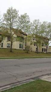 Temple Green Apartments - 2 Bedroom Apartment for Rent