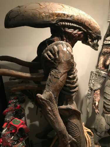 ALIEN LIFE SIZE 1:1 SCALE CUSTOM MADE BY BRUCE HANSING FROM ORIGINAL MOLDS!