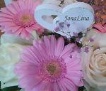 JonaLina