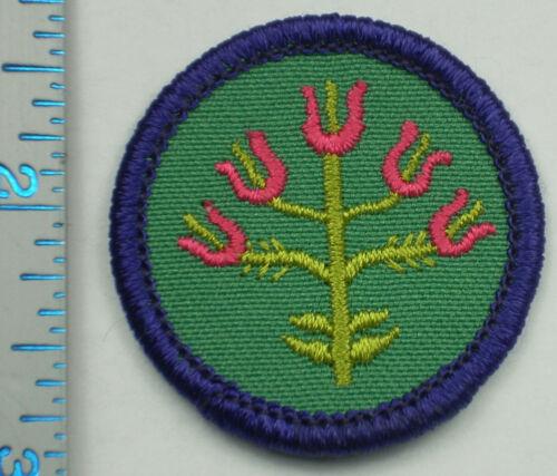 Vintage Girl Scout Badge - Folk Arts - 1980-2001 - retired