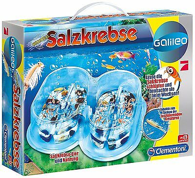 Clementoni Galileo Salzkrebse Basis Set Experimentieren Forschen Biologie