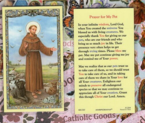 Saint St. Francis with Prayer for my Pet - Laminated Holy Card -1767