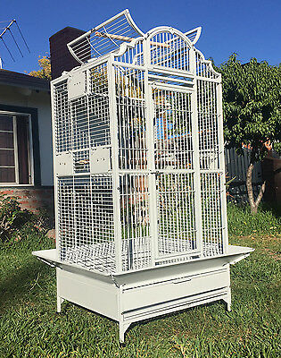 Elegant Wrought Iron Open Play Dome Top Bird Parrot Cage Metal Seed Guard WTE148