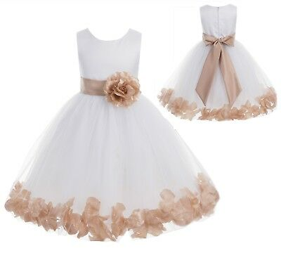 Flower Girl Dress Wedding Dress Birthday Dress Pageant Dresses Rose Petals Dress - First Communion Dress