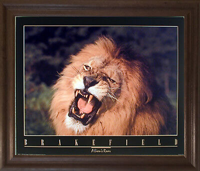(African Lion King Roar Close-up Animal Wildlife Wall Decor Framed Picture 19x23)
