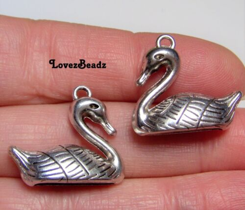 12 Silver Swan-Duck-Waterfowl-Bird-Charms-Jewelry-$30 ORDERS SHIP FOR FREE