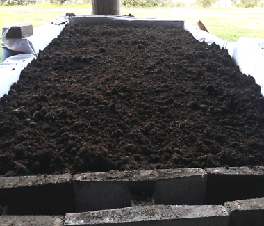 Organic Hot Composted Manure FREE DELIVERY TO SUNBURY