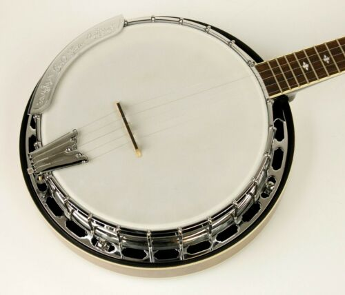Gold Tone BG-250F Bluegrass 5-String Banjo, Vintage Brown Finish! #BG-250F-2