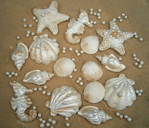 15 edible sugar shells starfish + sand ( golden sugar ) and pearls wedding cakes