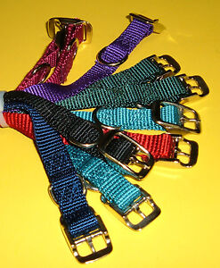10-Pack-Bundle-Dog-Collars-16-Nylon-Single-ply-Assorted-Colors