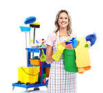 P/T Day Cleaner Needed
