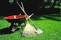 Yard work for a reasonable price