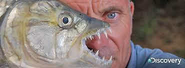 scruffyfishing