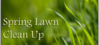 Spring Clean Ups and Aearting/Rolling Service
