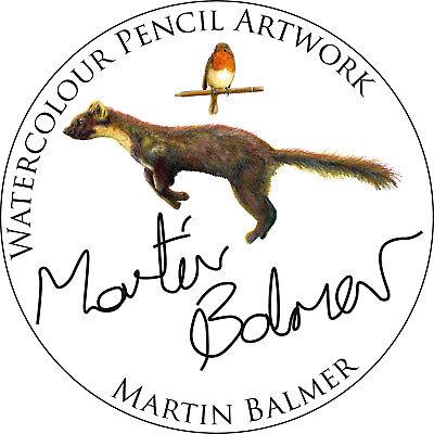 MartinBalmer