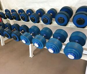 Australian barbell company commercial dumbbells 12.5-50kg