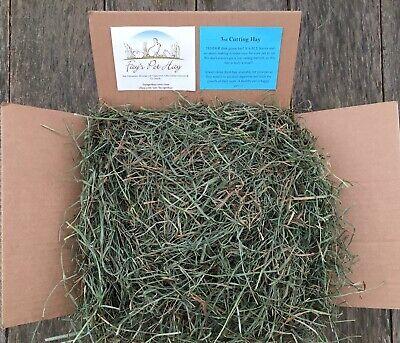 5 lb - ORGANIC 3rd Cut Hay! Timothy Mixed Grass Hay, Guinea Pig hay, Rabbit hay
