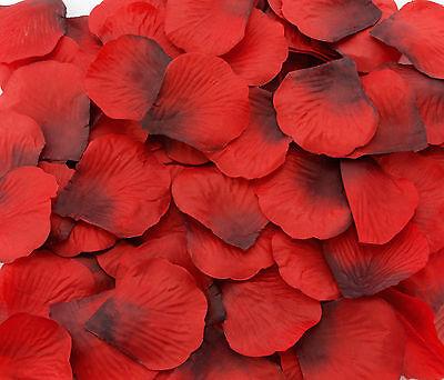 100 500 1000 Dunkel Rot Rosenblätter Rosenblüten Liebe Rose Hochzeit Romantik