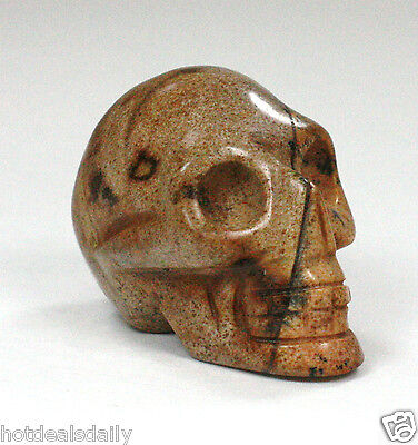 PICTURE JASPER SKULL METAPHYSICAL HEALING CRYSTAL HAND CARVED GOOD LUCK
