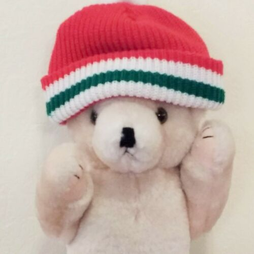 Teddy Bear, Christmas holiday decoration winter scarf hat glasses snowy weather