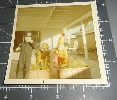 1960's Mickey Mouse HALLOWEEN COSTUME Tiger MASK Clown Vintage  Snapshot PHOTO](Halloween Tiger Costume)