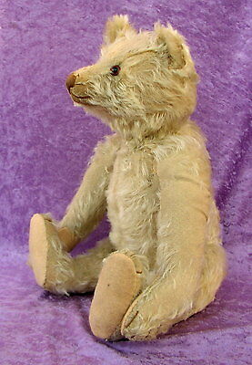 Antiker Steiff Teddy Bär um 1925 Höhe 45 centimeter