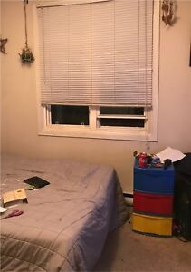 roommate wanted for nov 1