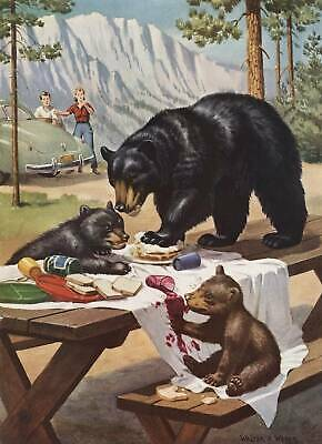 Bears at Yellowstone Park on picnic table by Walter Weber