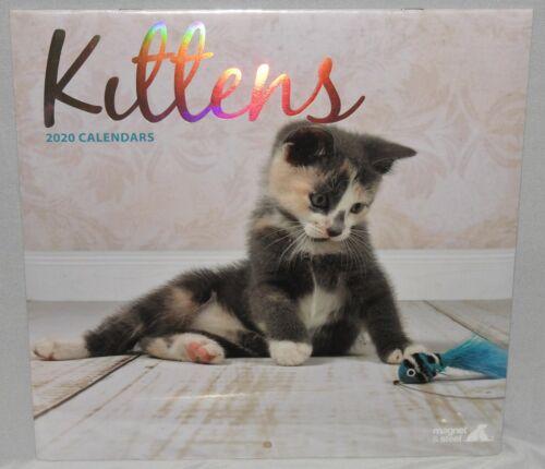 Kittens 2020 Calendar