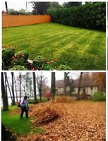 A&M LANDSCAPING - GRASS CUTTING AND LEAF REMOVAL